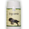 ERGOAMIN • 120 g
