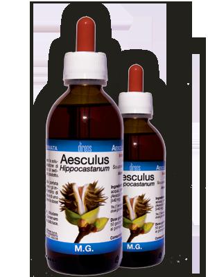 AESCULUS Hippocastanum • 50 / 150 ml