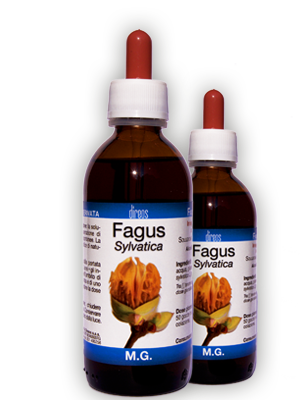 FAGUS Sylvatica M.G. • 50 / 150 ml
