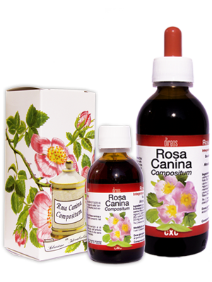 ROSA CANINA compositum • 50 / 150 ml