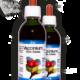 VACCINIUM Vitis-Idaea • 50 / 150 ml